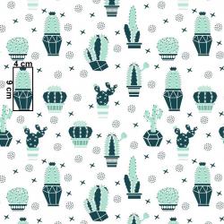 Kaktusy miętowe wz662