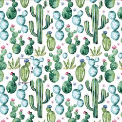 Kaktusy i kwiaty na białym...