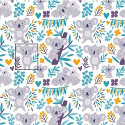 Misie koala białe tło wz1368