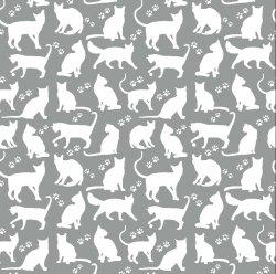 Białe kotki koty na szarym...
