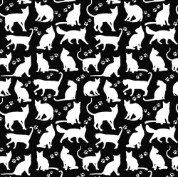 Białe kotki koty na czarnym...