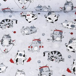 Czerwone kocie figle koty...