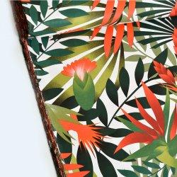 Liście eukaliptusa...