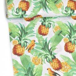 Papugi w ananasach wz688